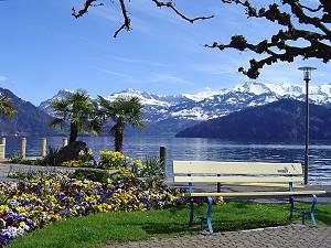 http://www.alpensicht.com/images/Weggis_Sommer_Fruehling_M.jpg